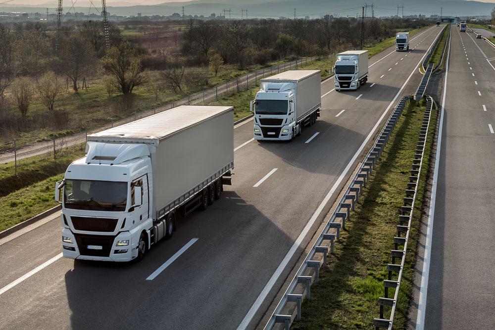 Transport Management Systems UK