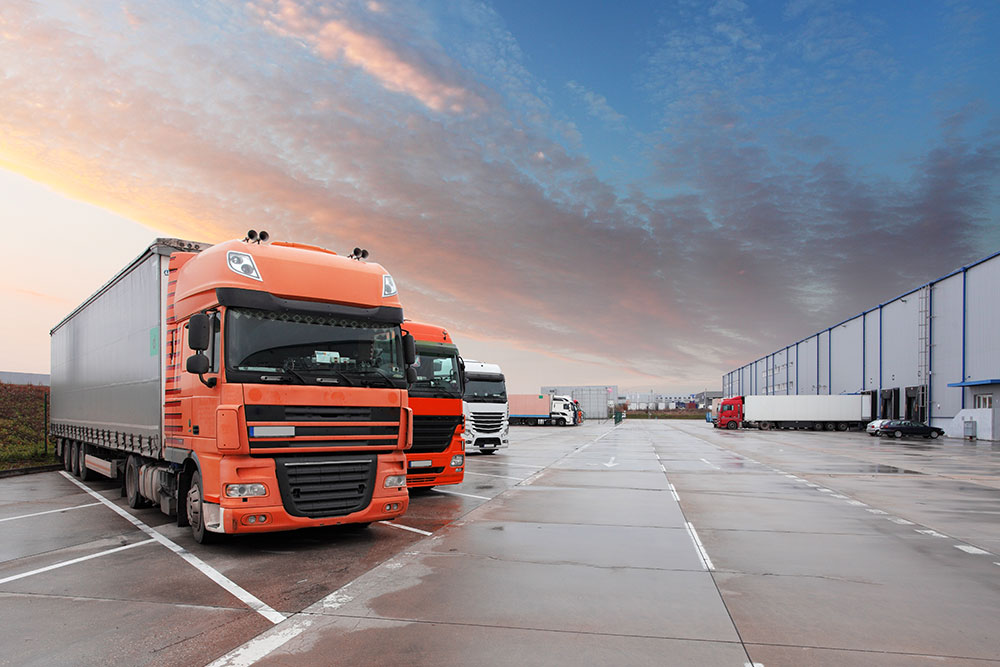 TMS Logistics Brexit