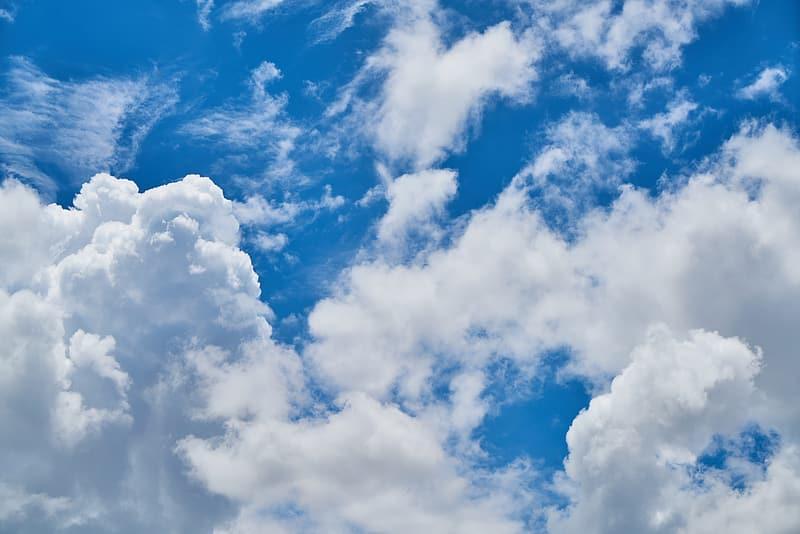 Cloud Transport Management